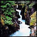 Cat Stevens - Back To Earth album