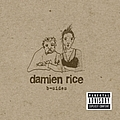 Damien Rice - B-Sides album