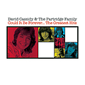 David Cassidy - Could It Be Forever - The Greatest Hits album