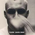 David Gray - Flesh album