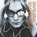David Gray - Sell, Sell, Sell album