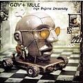 Gov't Mule - Life Before Insanity album