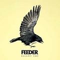 Feeder - Silent Cry альбом