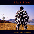 Pink Floyd - Delicate Sound of Thunder (disc 1) album