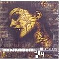 Rammstein - 5/4 (B-sides) альбом