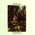 Van Morrison - Tupelo Honey album