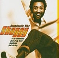 Shaggy - Boombastic Hits album