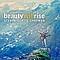 Steven Curtis Chapman - Beauty Will Rise album