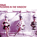 Travis - Flowers in the Window album