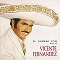 Vicente Fernandez - El Numero Uno Vol. II album