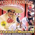 Vicente Fernandez - 23 Kilates Musicales album