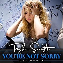 Taylor Swift - You're Not Sorry (CSI Remix) album