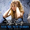 Taylor Swift - You're Not Sorry (CSI Remix) album