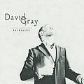 David Gray - Foundling album