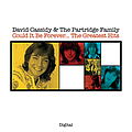 David Cassidy - Could It Be Forever...The Greatest Hits album