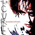 The Cure - Bloodflowers album