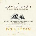 David Gray - Full Steam album