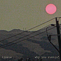 Lissie - Why You Runnin' album