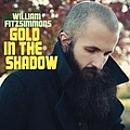 William Fitzsimmons - Gold in the Shadow album