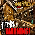 Ace Hood - The Final Warning (Mixtape) album