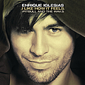 Enrique Iglesias - I Like How It Feels album