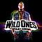 Flo Rida - Wild Ones album