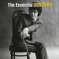 Donovan - The Essential Donovan album