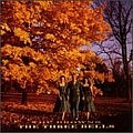 The Browns - The Three Bells (disc 4) album