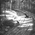 Burzum - Hvis Lyset Tar Oss album