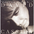 David Cassidy - Didn't You Used To Be album
