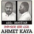 Ahmet Kaya - İyimser Bir Gül album