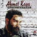 Ahmet Kaya - Sevgi Duvari album