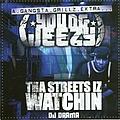 Young Jeezy - Tha Streets Iz Watchin album