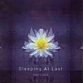 Sleeping At Last - Capture album