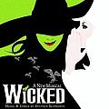 Idina Menzel - Wicked album