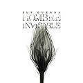 Ely Guerra - Hombre Invisible album