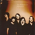 The Walkabouts - Shimmers album