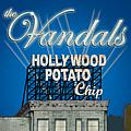 The Vandals - Hollywood Potato Chip album