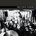 Uncle Tupelo - Anodyne album