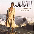 Yolanda Adams - Through the Storm album