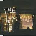 The Walkmen - The Rat album