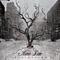 Aldren Liebe - Desiderium альбом