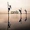 Camila - Dejarte De Amar album