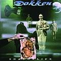 Dokken - Shadowlife альбом