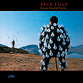 Pink Floyd - Delicate Sound Of Thunder album