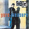 Shaggy - Pure Pleasure album