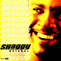 Shaggy - Hot Shot album