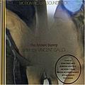 John Frusciante - Brown Bunny альбом