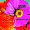Lucinda Williams - Essence album